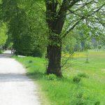 Bild: Landshut Flutmulde